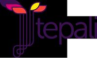 TEPALI Latinoamérica